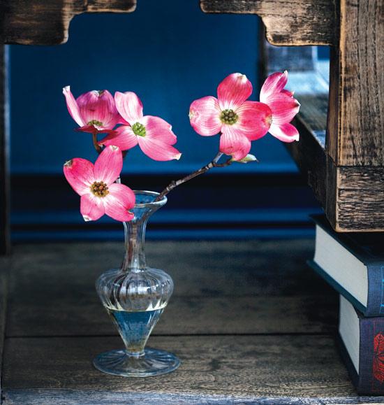 dark-florals-pink-dogwood